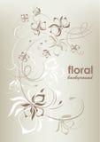 葡萄酒花卉背景,向量例证 图库摄影