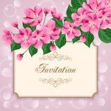 葡萄酒花卉邀请模板 库存图片
