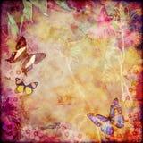 葡萄酒花卉蝴蝶背景 库存照片