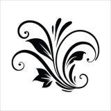 葡萄酒花设计元素 在白色背景隔绝的黑卷曲分支形状 r 免版税库存照片