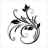 葡萄酒花设计元素 在白色背景隔绝的黑卷曲分支形状 r 向量例证