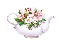 葡萄酒茶罐-苹果,樱桃开花 水彩 免版税库存图片