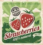 葡萄酒草莓农场的海报模板 免版税图库摄影