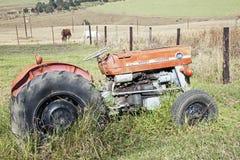 葡萄酒被放弃的红色Massey福格逊135拖拉机和马 免版税库存照片