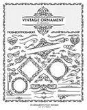 葡萄酒装饰品 库存图片
