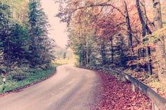 葡萄酒路通过秋天森林 免版税图库摄影