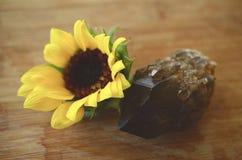 葡萄酒退了色花、明亮的颜色菊花和向日葵照片  可爱的明亮的颜色植物布置 免版税图库摄影