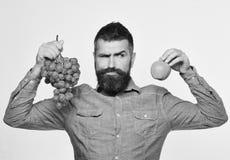葡萄酒酿造和秋天果子概念人有胡子的拿着束绿色葡萄和苹果 免版税库存照片