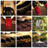 葡萄酒酿造学和酒拼贴画 库存照片