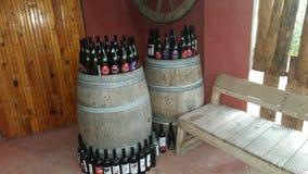 葡萄酒酿造 酒室 库存照片
