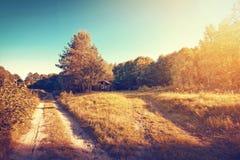 葡萄酒金子晴朗的秋天在森林和领域里 图库摄影