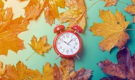 葡萄酒闹钟和槭树叶子 免版税图库摄影