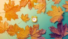 葡萄酒闹钟和槭树叶子 免版税库存图片