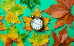 葡萄酒闹钟和槭树叶子 库存照片