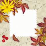 葡萄酒难看的东西与空的卡片的秋天背景 免版税库存照片