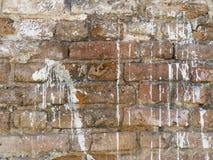 葡萄酒难看的东西参差不齐的红砖墙壁有被洒的白色膏药纹理背景 免版税库存图片