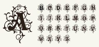 葡萄酒集合大写字母、花卉组合图案和美丽的金银细丝工的字体 艺术装饰, Nouveau,现代样式 免版税图库摄影