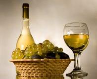 葡萄酒静物画 库存图片