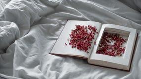 葡萄酒预定与在一张白色床上的干红色花 概念乡愁和记忆葡萄酒背景 库存照片