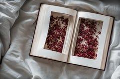 葡萄酒预定与在一张白色床上的干红色花 概念乡愁和记忆葡萄酒背景 免版税图库摄影