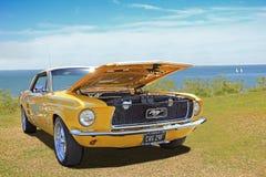 葡萄酒经典之作Ford Mustang 库存照片