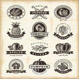 葡萄酒水果和蔬菜标号组 免版税库存照片