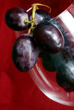 葡萄酒 免版税库存照片