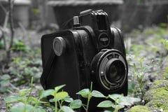 葡萄酒Gevabox赫法尔特照相机 免版税库存图片
