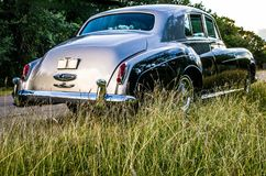 葡萄酒luxery大型高级轿车背面图通过在一条农村得克萨斯路的高草 库存图片