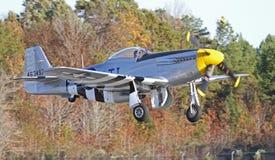 葡萄酒P-51野马战斗机 免版税库存照片