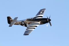 葡萄酒P-51野马战斗机 免版税库存图片