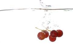 葡萄飞溅水 库存照片