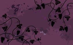 葡萄,植物背景。墙纸 库存照片