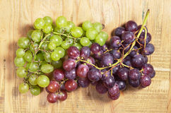 葡萄绿色红色 库存照片