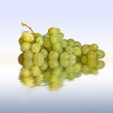 葡萄 库存图片