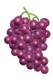 葡萄 免版税库存图片