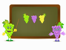 葡萄illustration.cdr 向量例证