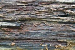 董事会老粗砺的纹理木头 免版税库存照片