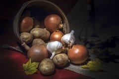 葱、土豆和大蒜收获  库存图片