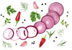 葱、大蒜、在白色背景隔绝的辣椒和香料 顶视图 免版税图库摄影