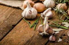 葱、大蒜和草本生物从庭院 免版税库存照片