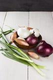 葱各种各样的成绩:白色,黄色,红洋葱,青葱, gr 免版税库存图片