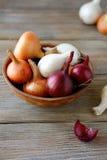 葱和干果壳在黏土碗在木板 免版税库存图片