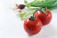 葱蕃茄 免版税库存照片