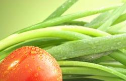 葱蕃茄 免版税图库摄影
