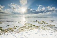 蒂亚尼海滩在肯尼亚 在海洋的美丽的景色 免版税库存图片