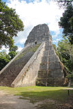 蒂卡尔,危地马拉:寺庙v,其中一座主要金字塔(57米 库存照片