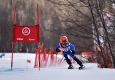 蒂娜萨顿纪念品-障碍滑雪滑雪竞争 免版税库存照片