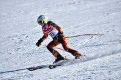 蒂娜萨顿纪念品-障碍滑雪滑雪竞争 图库摄影