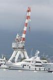 蒂瓦特,黑山- 6月16 :在蒂瓦特港的金黄冒险旅行游艇  免版税库存照片